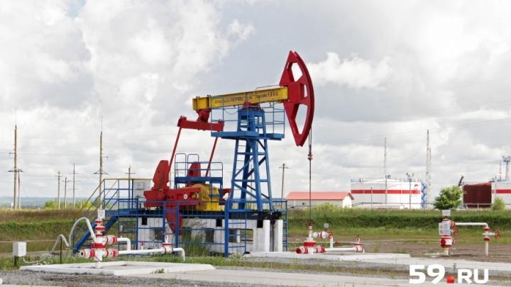 Скважины, станки-качалки и дожимная станция: как добывают нефть в Пермском крае
