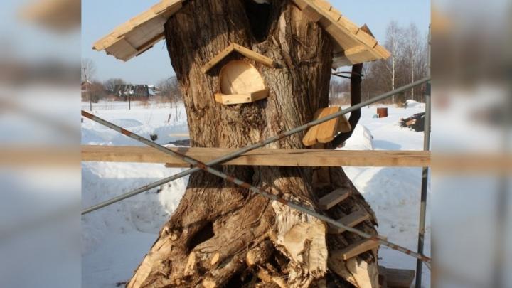 «Мы везём деревья не на свалку, а в мастерскую»: в пермском лесу появился дом из пня