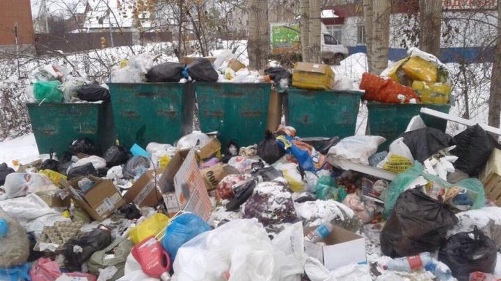 Зловоние и грязь: в Березняках неделю не вывозят мусор