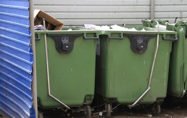 В Самаре насчитали более тысячи бесхозных контейнерных площадок