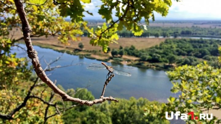 Плюс 30: в Башкирию придет настоящее лето