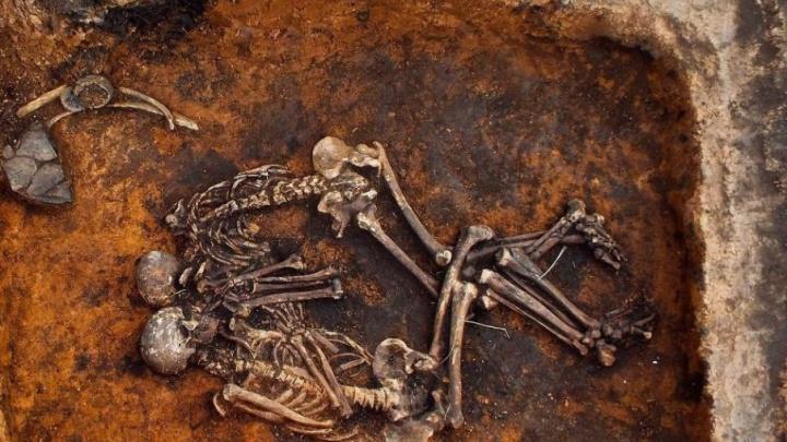 Древнее захоронение из Самарской области помогло установить возраст чумы