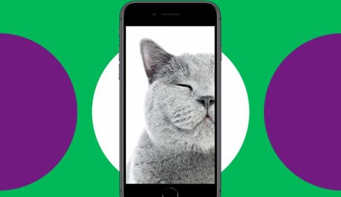 «МегаФон» запустил в мае TRADE-IN для смартфонов Samsung и Apple в городах России