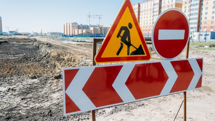 Вдоль улицы Федорова высадят 550 деревьев