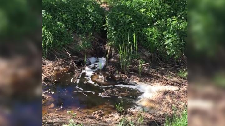 Есть ли фильтрат со «Скоково» в реке Норе: областные власти рассказали о результатах исследования