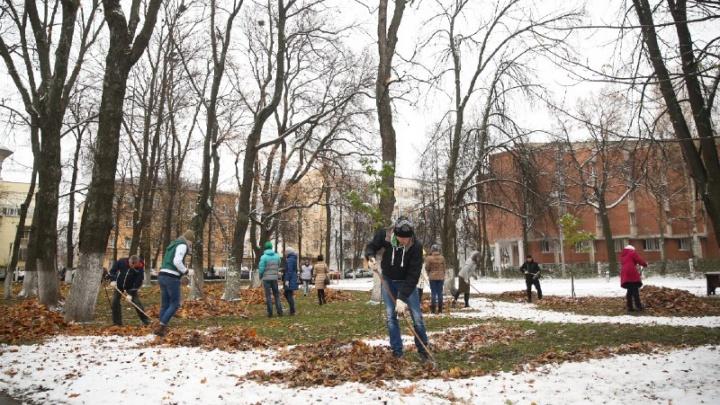 Субботники продолжаются: убирать город будут студенты