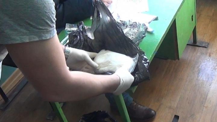 В Соломбале полицейские задержали северодвинца с 1,5 килограмма наркотиков