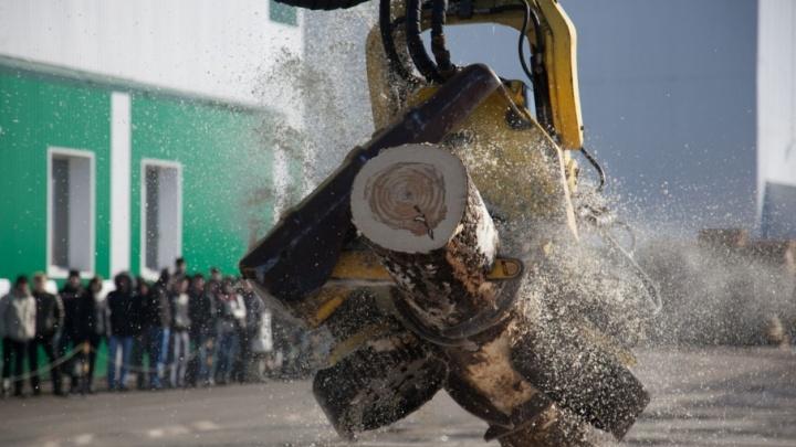 В Плесецком районе новый лесопильный завод заработает к 2020 году