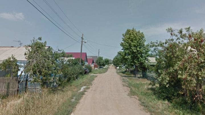 Судьбу пса, напавшего на мальчика под Челябинском, решат после прокурорской проверки