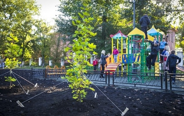 О федеральном проекте по благоустройству дворов и скверов в Челябинске знают лишь госслужащие