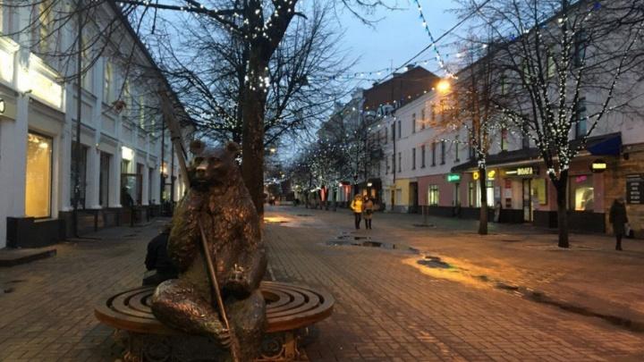 В центре Ярославля зимой будут раздавать бесплатный интернет: места