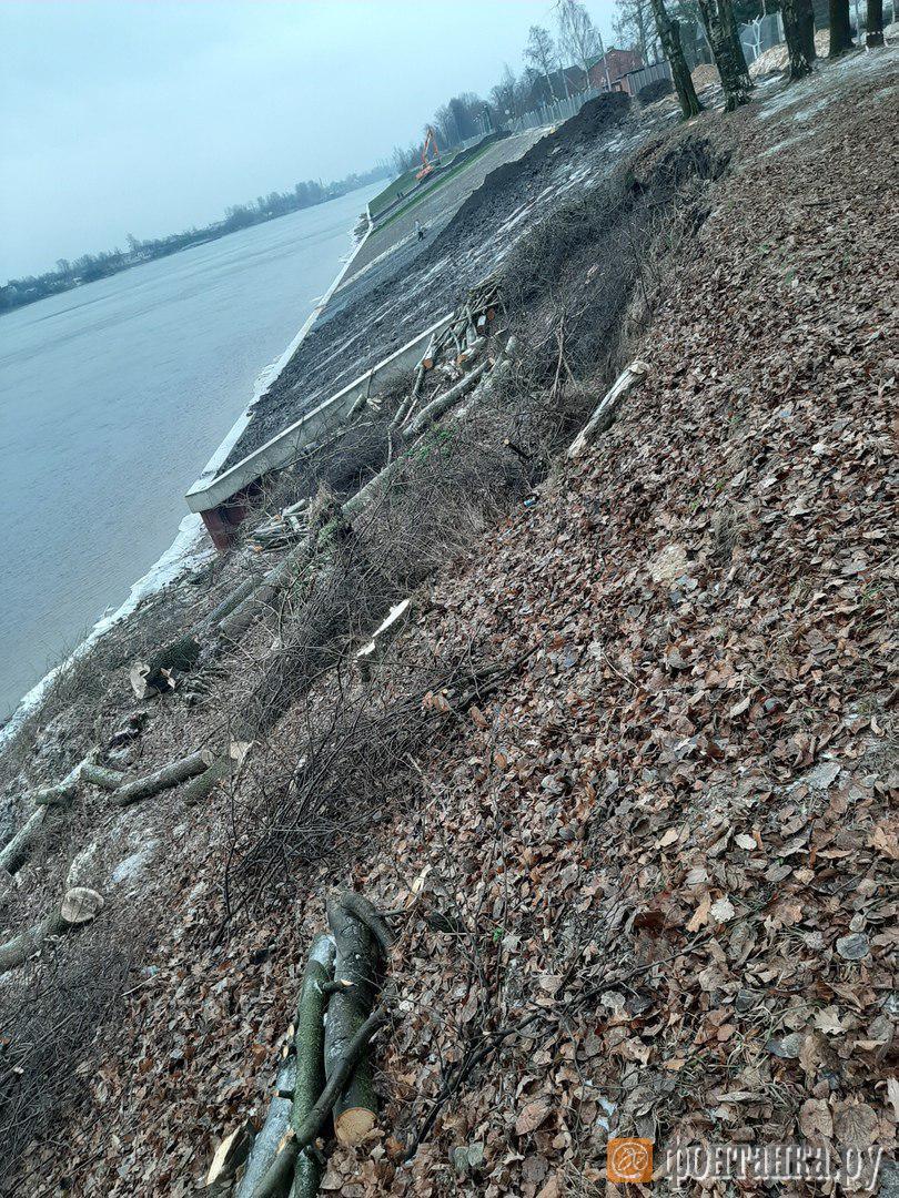 Берег Невы вдоль Шлиссельбургского шоссе. Работы по берегоукреплению / автор фото Виктория Зверева
