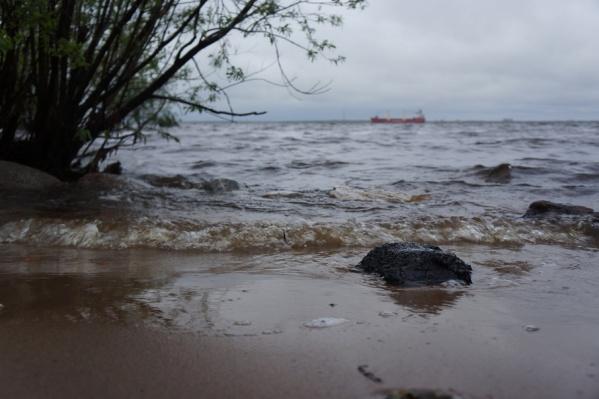 Суббота в Поморье, по прогнозам синоптиков, выдастся дождливой