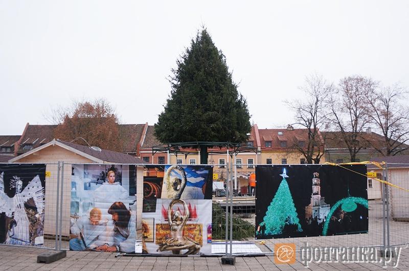 Главная елка города в стадии установки