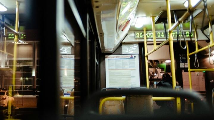 Массовая драка в городском автобусе №13 попала на видео