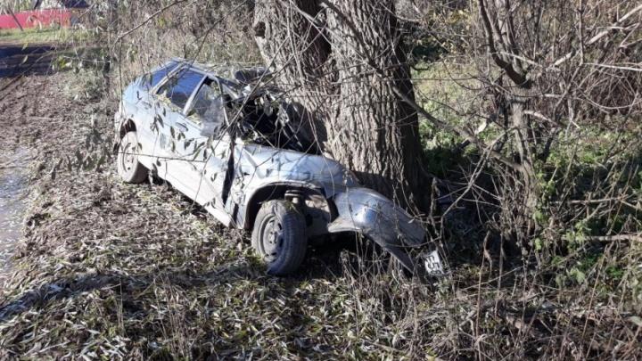 В Башкирии ВАЗ-2114 врезался в дерево: водитель и пассажир погибли