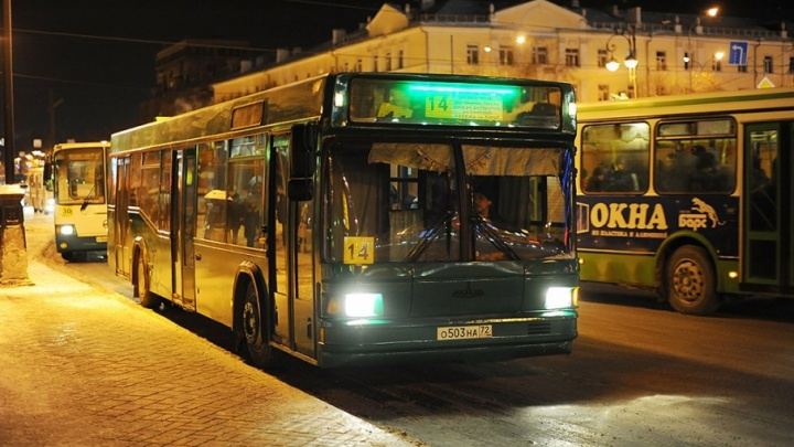 Бесплатные автобусы отвезут тюменцев домой в Рождество