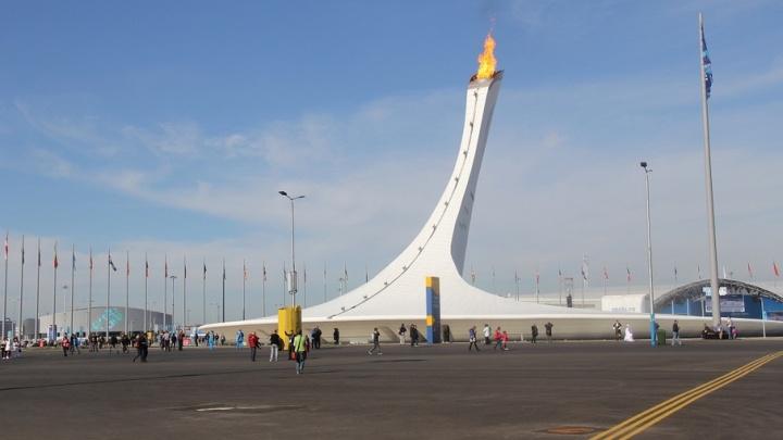 С Волгоградской области пытались получить миллион за стенд на Олимпиаде в Сочи