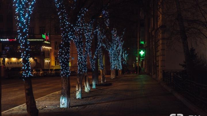 К Новому году в Самару привезут светящуюся елку