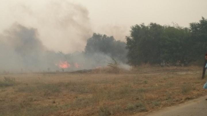 В Волгоградской области огонь уничтожил более 150 строений