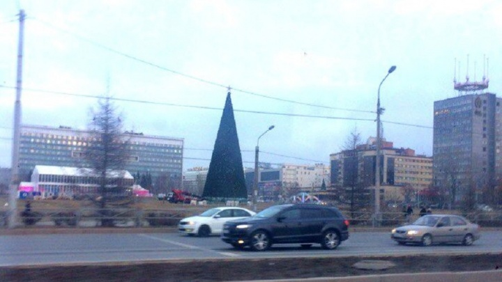 Голосуем за ребят: в Перми выберут школьников, которые зажгут огни на новогодней елке