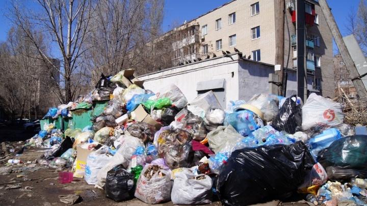 Мусорный «апокалипсис»: Куйбышевский район Самары утопает в бытовых отходах