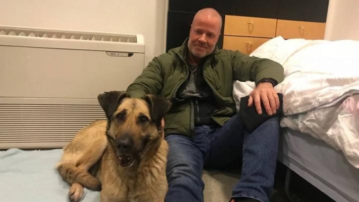 Датский военный писатель забрал трехногую собаку Раду из самарского приюта