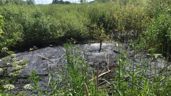 Неизвестные слили нефть в придорожную канаву в Ярославском районе