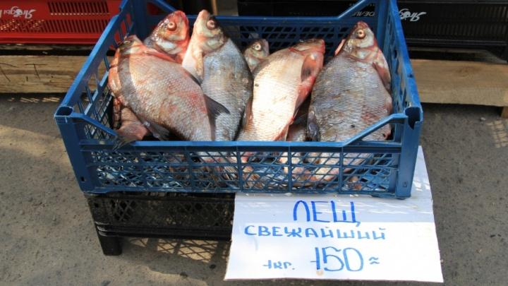 Торговку ядовитой рыбой заставят поработать на благо Архангельска