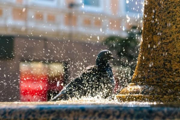 На ремонт фонтана ушло несколько месяцев