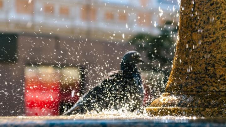 Обновленный фонтан в сквере «Шанхай» включат в начале июня