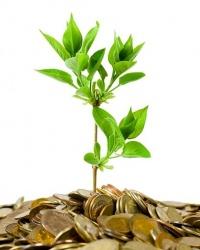 Деньги должны работать! Обзор программ кредитования малого бизнеса
