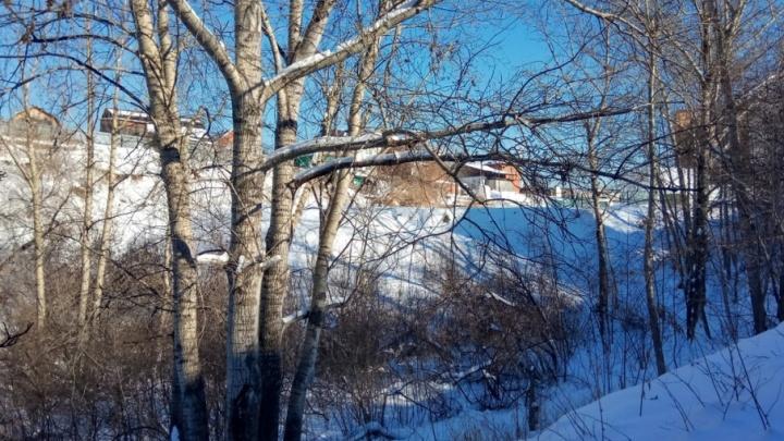 В логу реки Тюменки у набережной создадут аллею арт-объектов