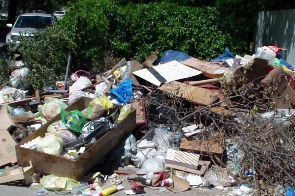 Пока чиновники и коммунальщики выясняют отношения, гора мусора растет