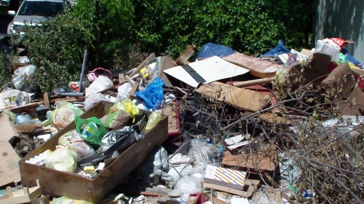 Краснооктябрьский район зарастает мусором из-за конфликта УК и чиновников