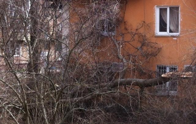 В Ростовской области восстановили энергоснабжение после стихии