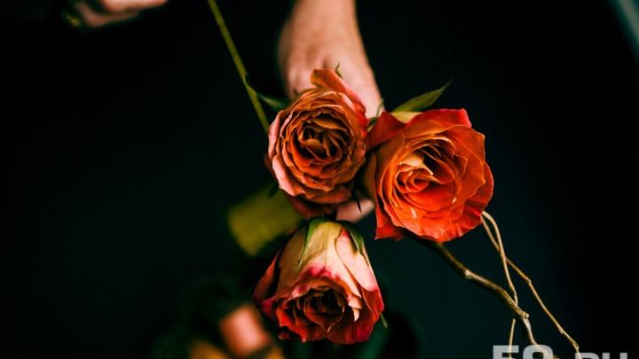 Звезды, книги и музыка: рассказываем, как в Перми отпразднуют День семьи, любви и верности