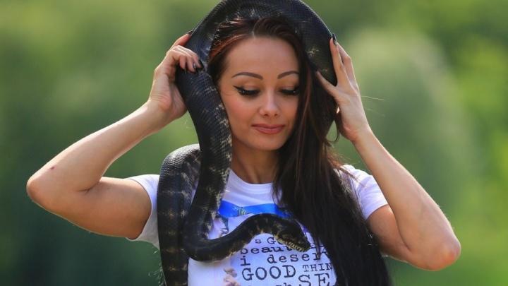 Девушка из Самарской области прошла кастинг на шоу «Танцы» со змеиным номером