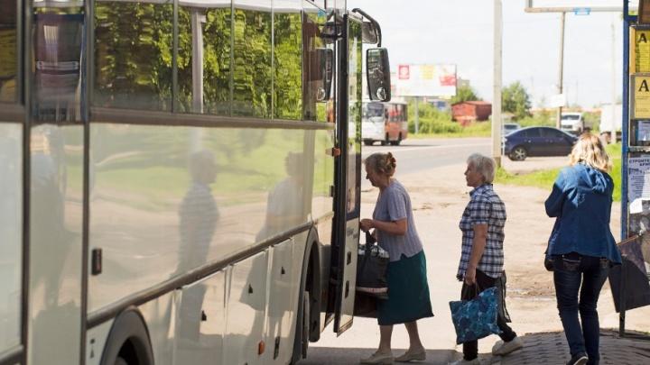 В Ярославле пустят больше автобусов до кладбища