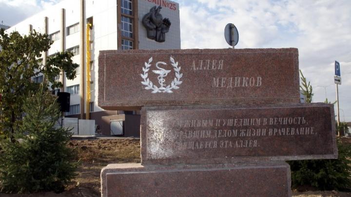 Возле больничного комплекса Волгограда высадили аллею Медиков