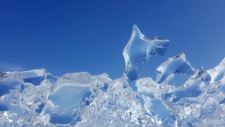 Пришла зима, когда не ждали: волгоградцы делятся снежными фото