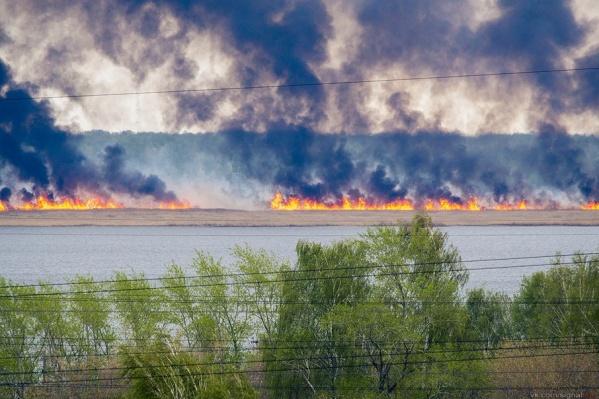 За последние сутки в области произошёл всего один лесной пожар
