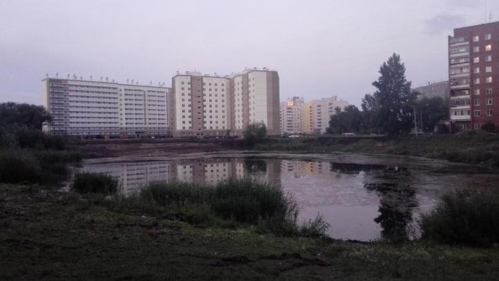 Слёзы утекли: из пруда, который хотят благоустроить власти Челябинска, начала уходить вода