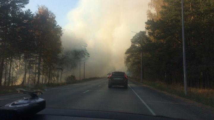 Дым окутал Салаирский тракт: в районе бесплатных беседок загорелась трава