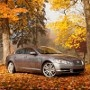 «Выгодная осень»: чем больше, тем дешевле