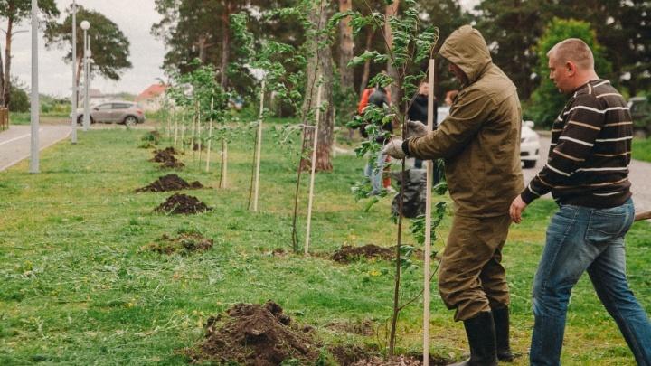 Припомнили токсичные отходы в Зареке и разливы нефти: Тюмень заняла 17-е место в экологическом рейтинге