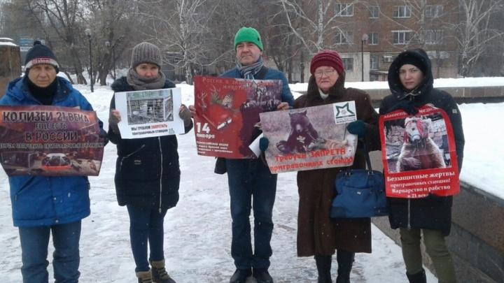 В Самаре зоозащитники выступили против тренировочной травли животных