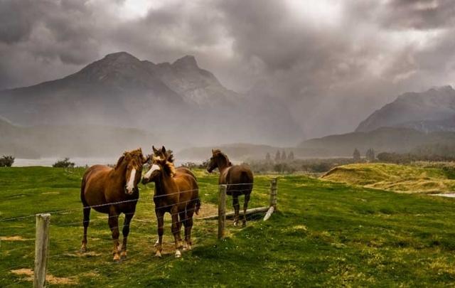 Полезные советы пейзажным фотографам: как сделать уникальные снимки?