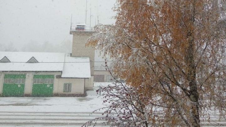 Белоснежный город: ярославцы делятся фотографиями первого снега