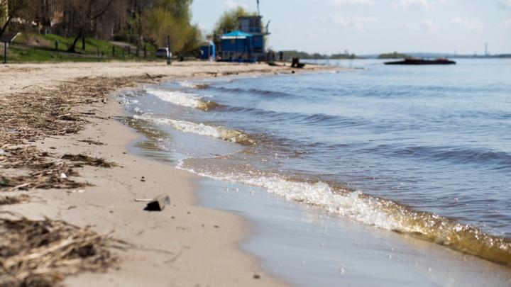 В Ярославской области ищут «чёрных копателей» берега Волги